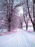 Snowy Road by patrolski