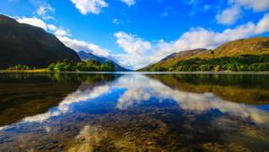 Natural St Andrews cross at Loch Shiel by NurturingNaturesGift
