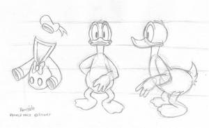 Duck reference sheet 1 by Henrieke