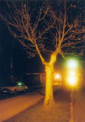glowing by myfonj
