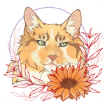 C0MM : u do like sunflowers by paleasmilk