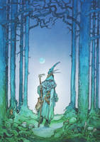 Into the Wild Wood by Shiantu