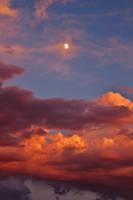 The Guiding Moon by AthenaIce