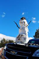 Got Snowman? by AthenaIce