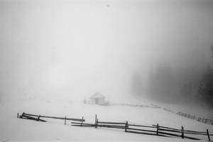 frozen winter tear by Husckarl