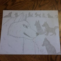Wolf Pack by SUPERWOLF10