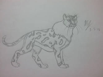 Cheetah by SUPERWOLF10