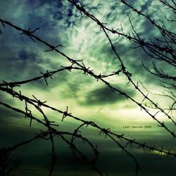 Freedom Sky by Last-Savior
