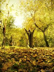 Fall Road by Last-Savior