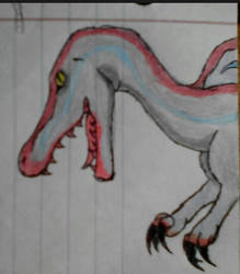 Spino by IFIGMER