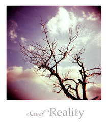 Surreal Reality by Xingz