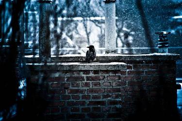 Crow by VoidIndex