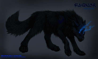 Shadow Wolf: Ragnor by KazeraVX