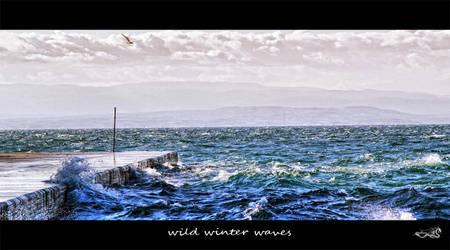 wild winter waves... by archonGX