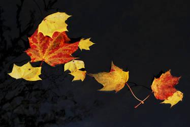 Autumn Santa by Earth-Hart
