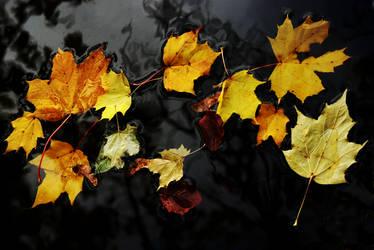 Autumn Encore by Earth-Hart