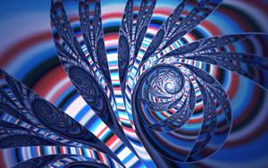 Ammonite by tatasz
