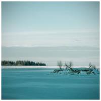 winter by rattattart