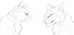 Lionblaze and Tigerstar scetch by AnimeLionessMika