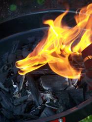 fire by mollica