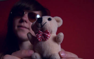 bear by mollica