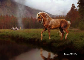 The stallion by Julianez