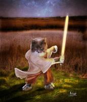 Guus Jedi Master by Julianez
