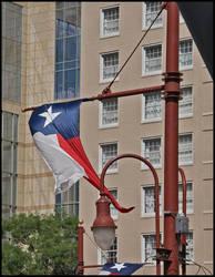 Texas Proud by 3vil-Grin