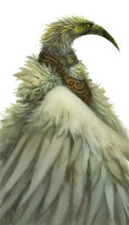 Random bird man by Silverfox5213