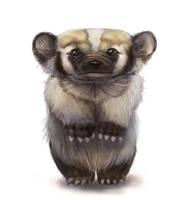 American Badger by Silverfox5213