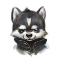 Husky head by Silverfox5213