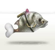 Cupid archer fish by Silverfox5213