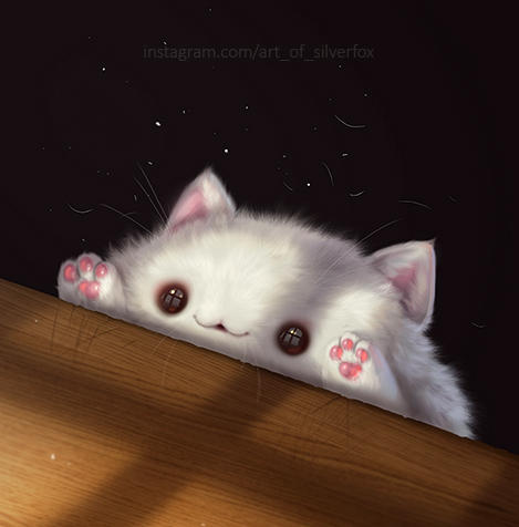 Bongo cat by Silverfox5213
