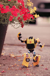 sunstreaker by halogenlampe