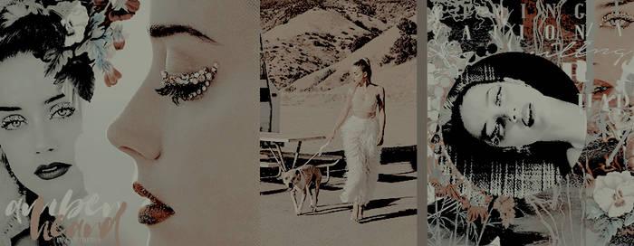 Amber Heard [Timeline] by OriginalCyntheria