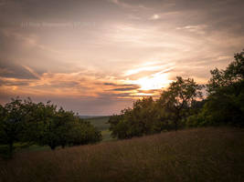 Cherry sky in July by Vampirbiene