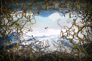 Skyfall Artwork by ahmedelzahra