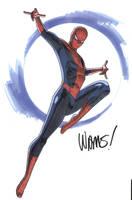 Spider - man by BroHawk