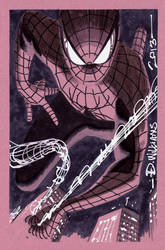 Spidey at Heroes Con 2013 by BroHawk