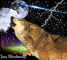 For Joey Blondewolf2 by Shippudenpro28
