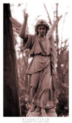 angel of mercy by VisualField