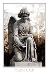 angel of mercy 3 by VisualField