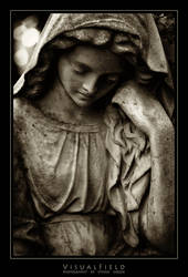 sorrow 17 by VisualField