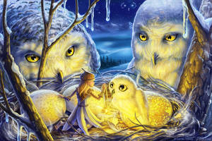 Winter's Nest by ldiehl