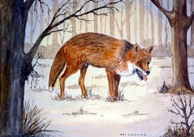 Fox-by-Pat-Coward by newboldworld