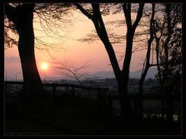 One Evening in Spring by SpaceTurtleStudios