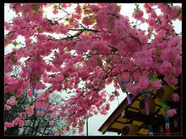 Flowers of Nikko by SpaceTurtleStudios