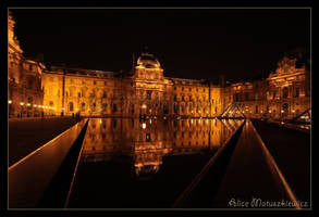 Reflection at the Louvre by allym007