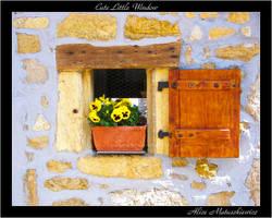 Cute Little Window by allym007