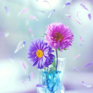 Springtime by arefin03